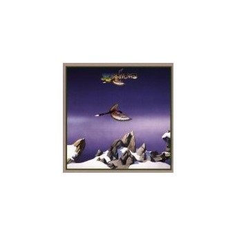 Yesshows - LP/Vinyl