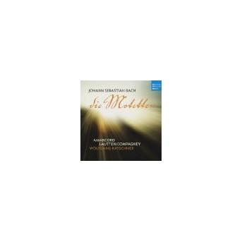 Bach: Die Motetten
